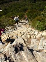 Steep path climbing Mt Coolum